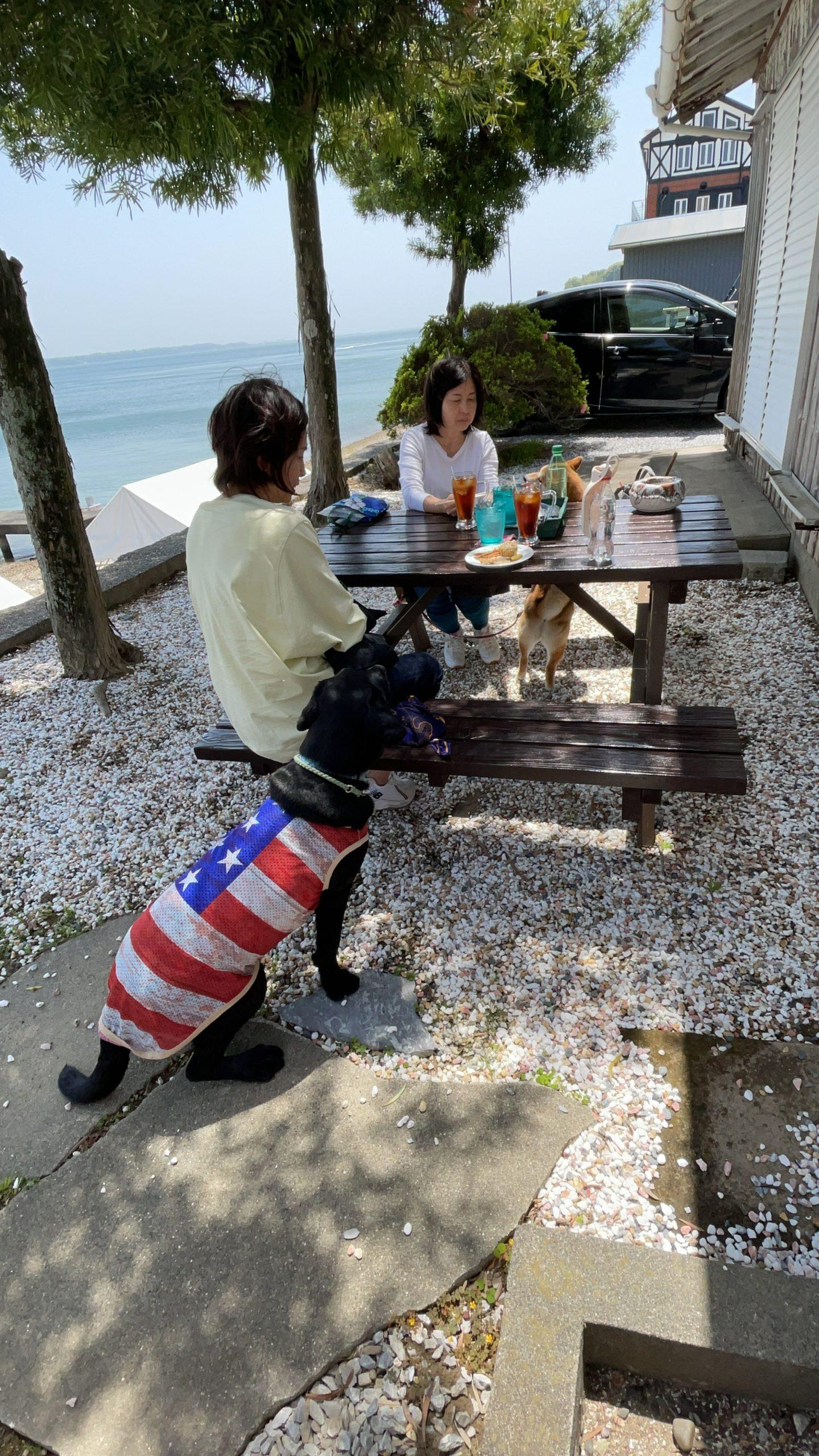 浜名湖の湖畔でカフェができるテーブル浜名湖